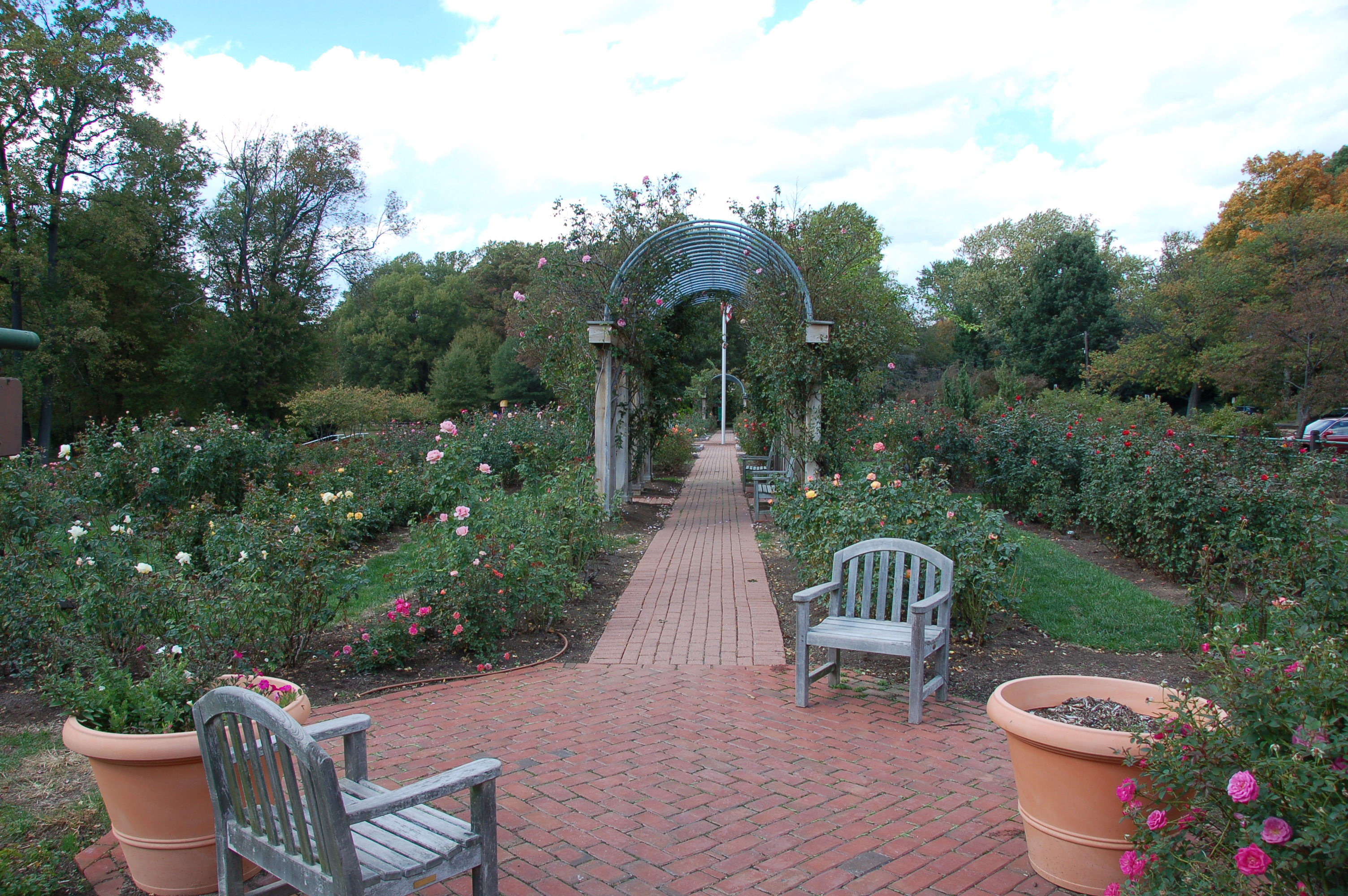 Gardens Archives All Around Arlington