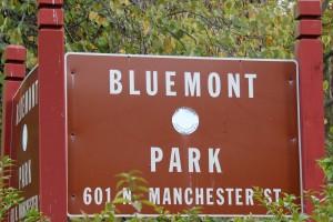 Bluemont Park Arlington VA